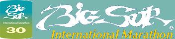 BISM-logo1