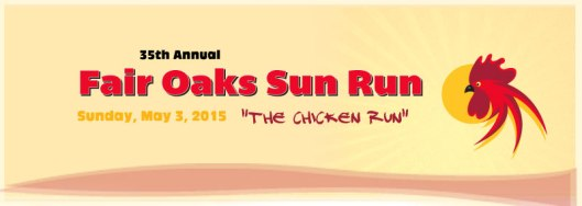 chicken-run-banner